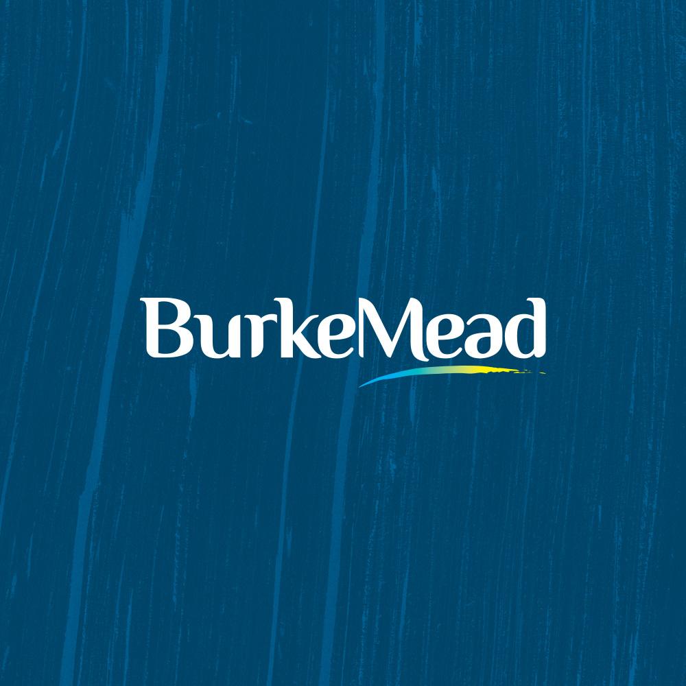 BurkeMead
